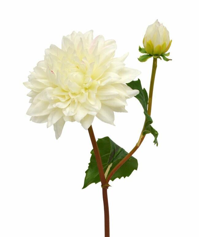 Artificial branch Dália cream 50 cm