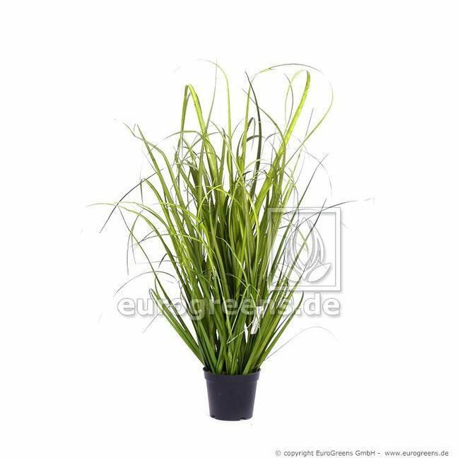 Artificial bundle of grass Common reed in a flowerpot 60 cm