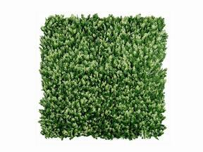 Artificial coniferous panel Cypruštek tujovitý - 50x50 cm