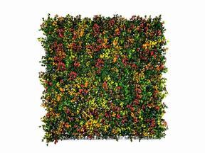 Artificial flower panel Leucadendron - 50x50 cm