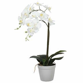 Artificial Orchid white 65 cm
