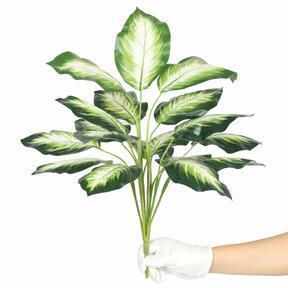Artificial plant Dífenbachia white 50 cm