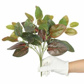 Artificial plant Fitonia red 25 cm