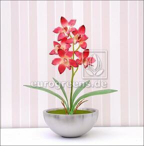 Artificial plant Orchidea Cymbidium burgundy red 50 cm