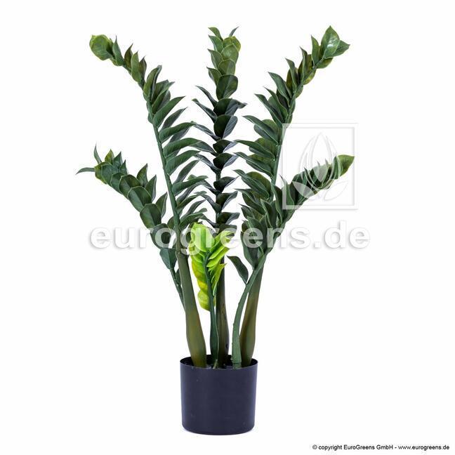 Artificial plant Zamiokulkas 75 cm