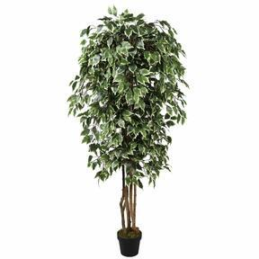 Artificial tree Fikus Benjamin green white 170 cm